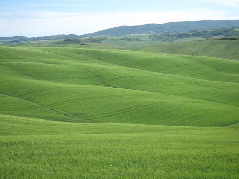 Via Francigena; San Gimignano to Montalcino: Folds of land  - © William Mackesy
