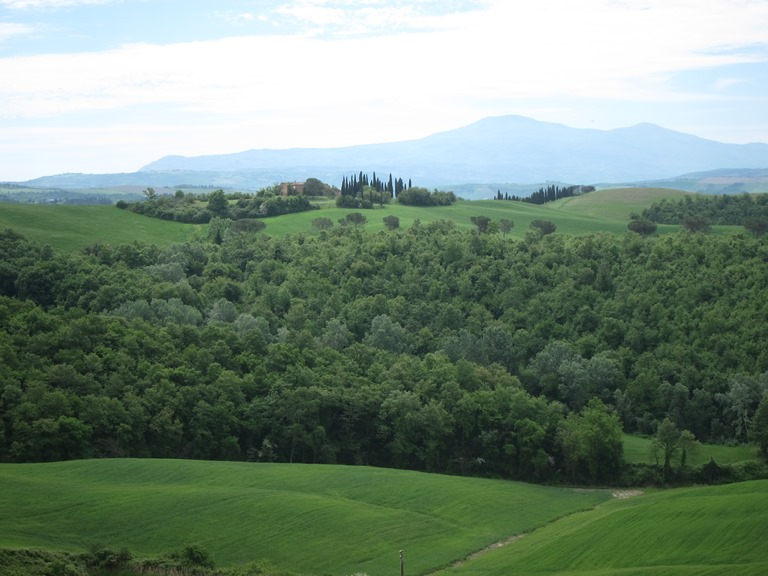 Via Francigena; San Gimignano to Montalcino: Getting prettier  - © William Mackesy