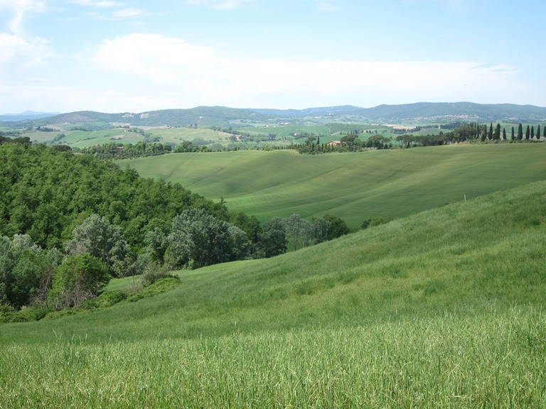 Via Francigena; San Gimignano to Montalcino: Above Arbia valley, near Buonconvento  - © William Mackesy