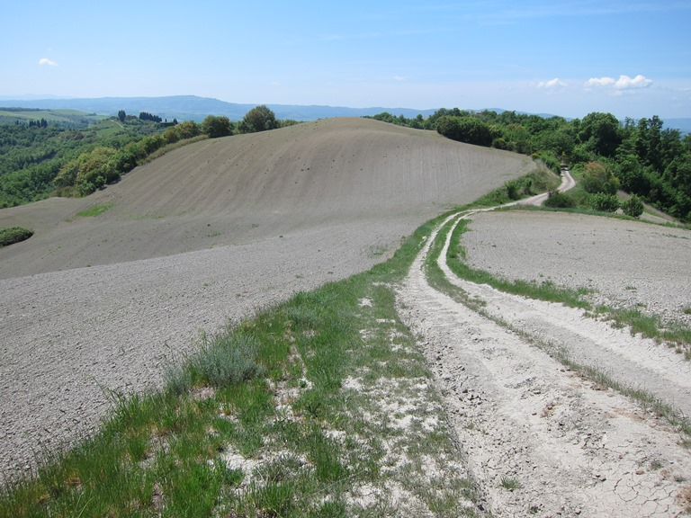 Via Francigena; San Gimignano to Montalcino: Ridgetop Track  - © William Mackesy