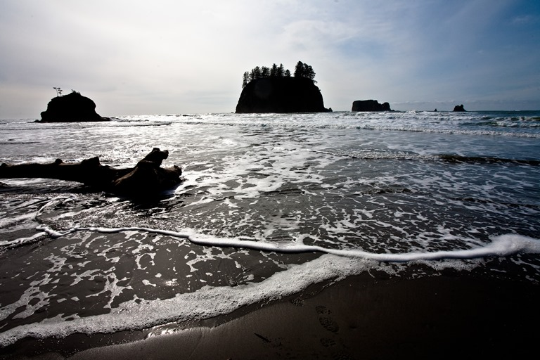 Second Beach, Olympic National Park-83  - © Esther Lee flickr user