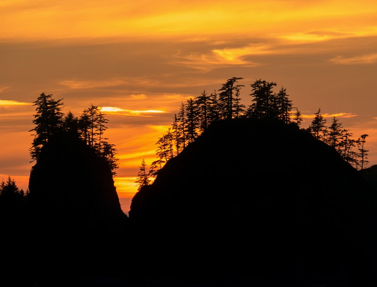 Second Beach, Olympic National Park, Washington  - © Ralph Arvesen flickr user