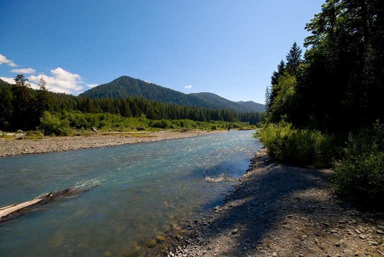 Hoh River, Olympic National Park - ©  Steve Voght flickr user