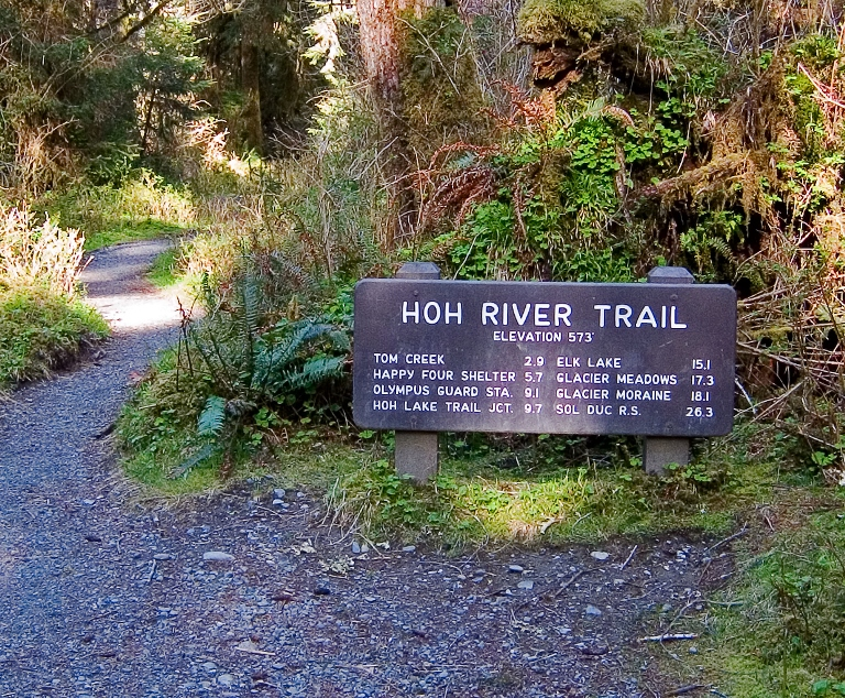 Hoh River Trail  - © pfly flickr user