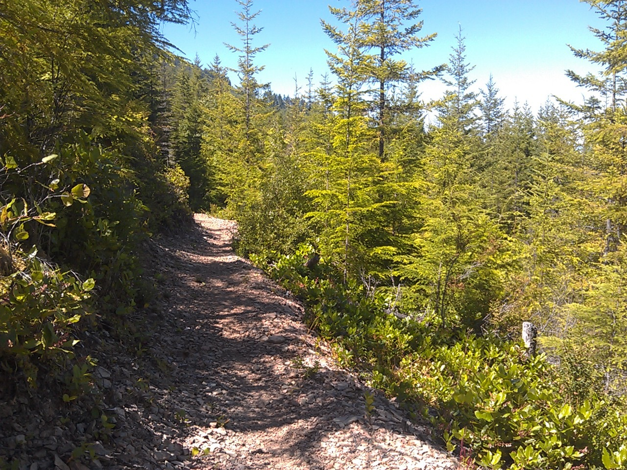 USA North-west/Olympic NP, Olympic Discovery Trail, , Walkopedia