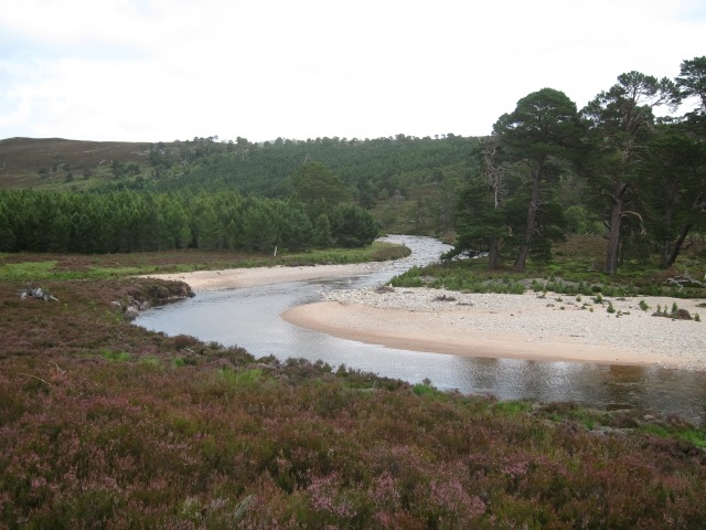 United Kingdom Scotland Cairngorms, Glen Lui, Lower glen, Walkopedia