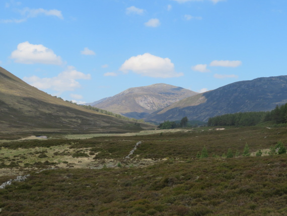 United Kingdom Scotland Cairngorms, Glen Lui, Carn A Mhaim from Glen Lui, Walkopedia