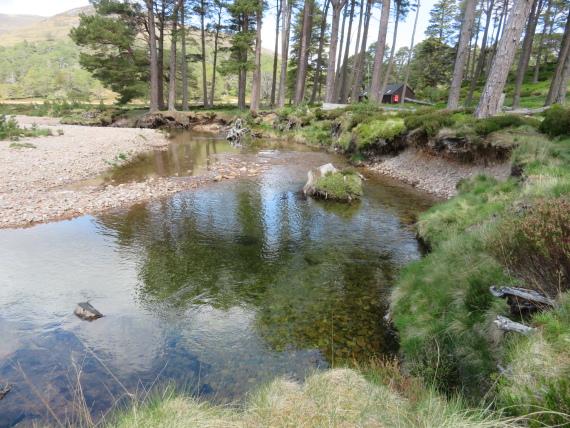 United Kingdom Scotland Cairngorms, Glen Lui, , Walkopedia