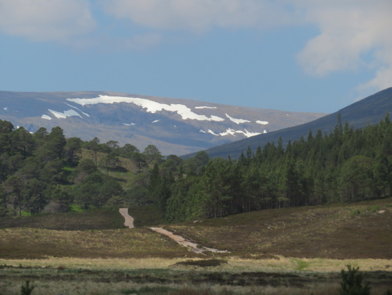 Hills on the far side of Glen Dee, from Upper Glen Lui - © William Mackesy
