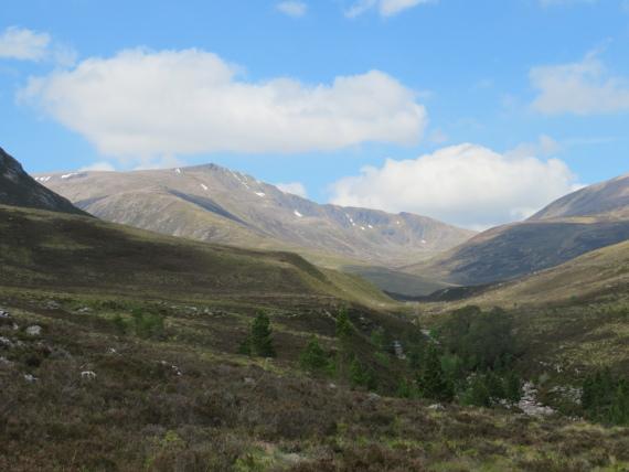 United Kingdom Scotland Cairngorms, Glen Lui,  Ben Macdui massif from Glen Lui, Walkopedia