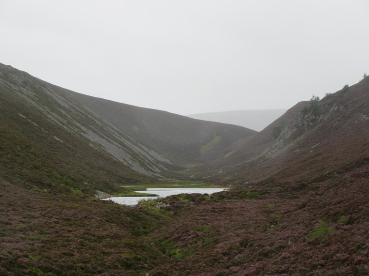 That gap in the ridge between glens Lui and Quoich (2)