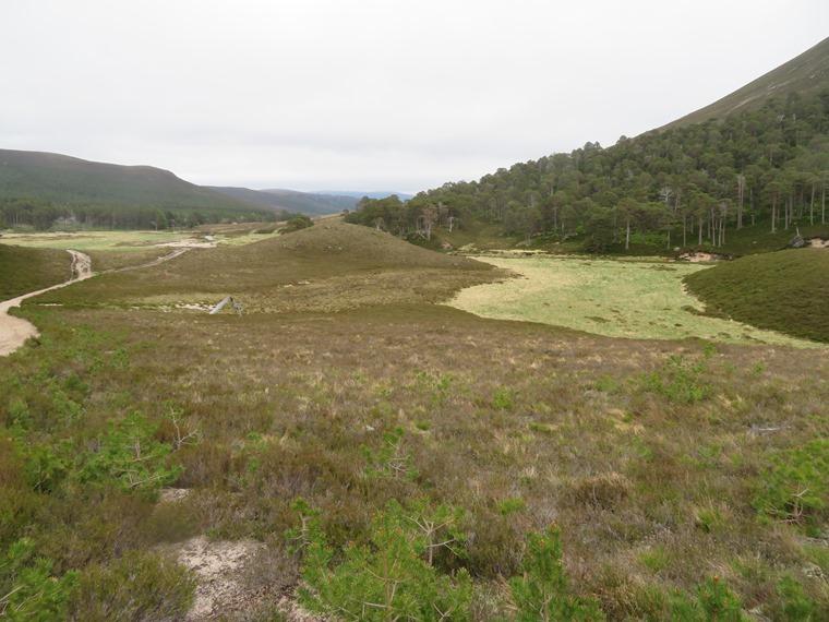 United Kingdom Scotland Cairngorms, Glen Lui, Upper Glen Lui , Walkopedia