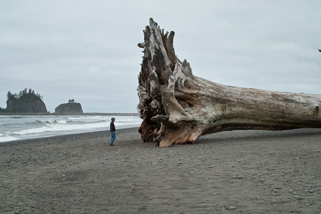 La Push - © Flickr user- Charles