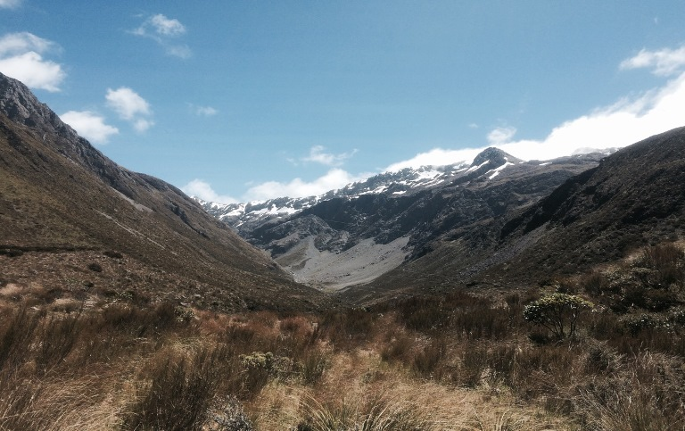 Arthur's Pass Area: Otira Valley - © Anthony Fawcett