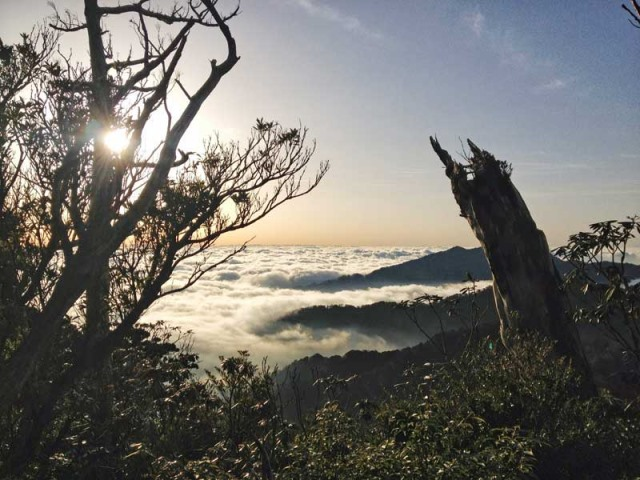 Yaku-shima