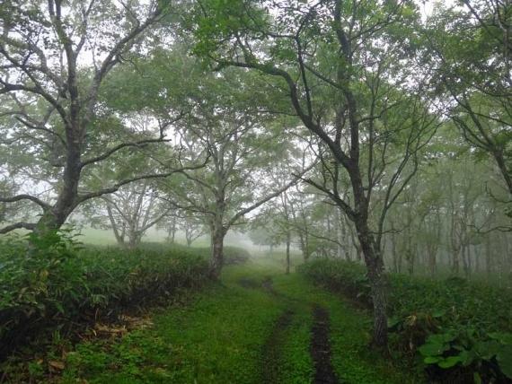 East Hokkaido - © Walk Japan
