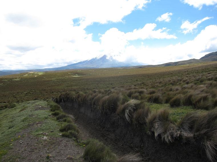 Cerro Ruminahui: Dykes as field boundaries - © William Mackesy