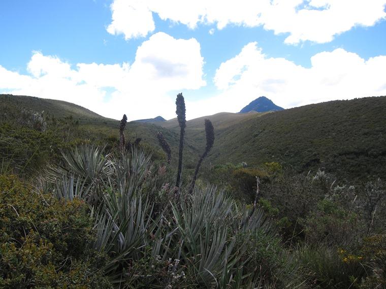 Cerro Ruminahui: © William Mackesy