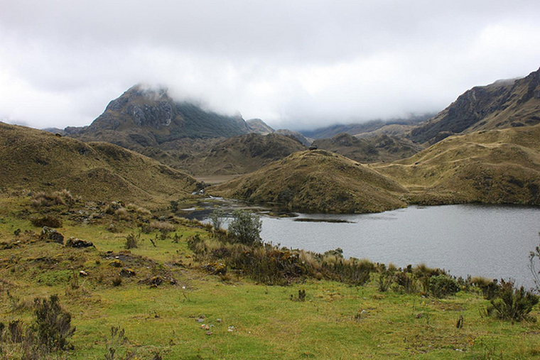 Tour of the Cajas: Cajas - © Flickr User Sally Taylor