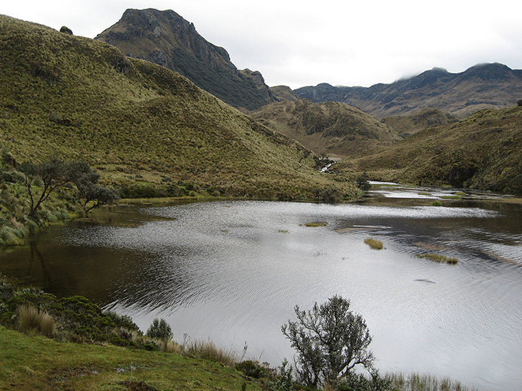 Tour of the Cajas: Cajas - © Flickr User Steve