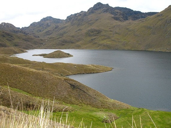 Tour of the Cajas: Laguna Luspa - © Eric de Leon