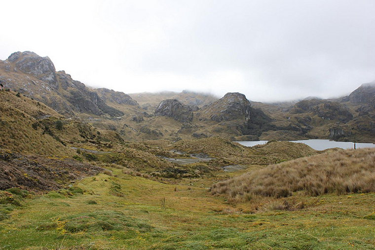 Tour of the Cajas: © Flickr User Sally Taylor