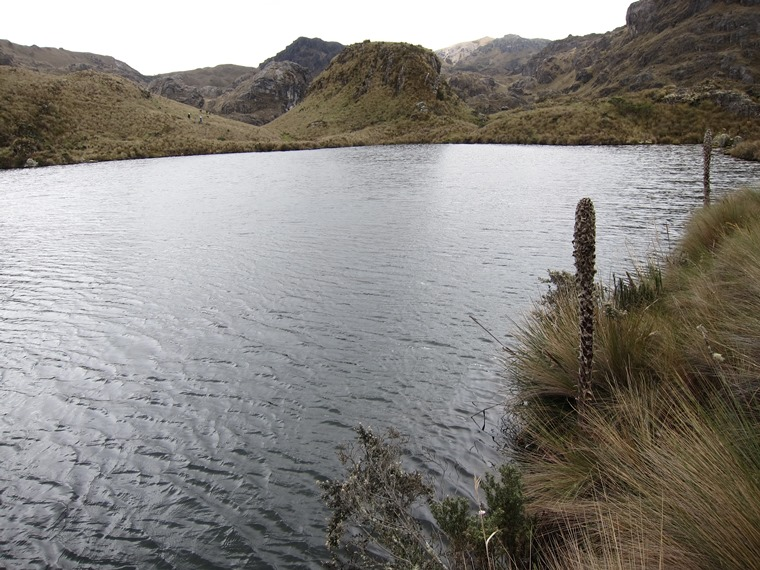 Cajas NP: © William Mackesy