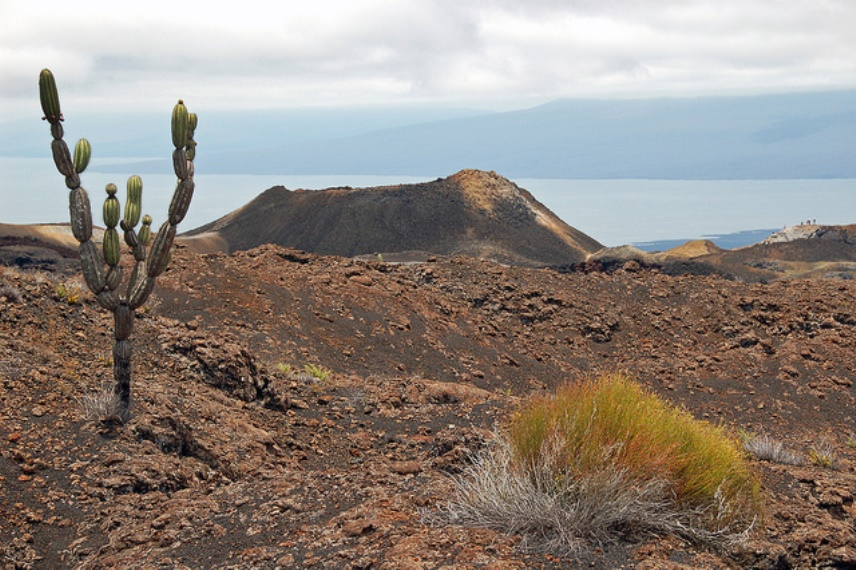 Hiking Sierra Negra volcano - © Flickr User - jdegenhardt