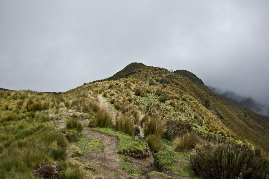 Rucu Pichincha - © Flickr User - M+M Photographers