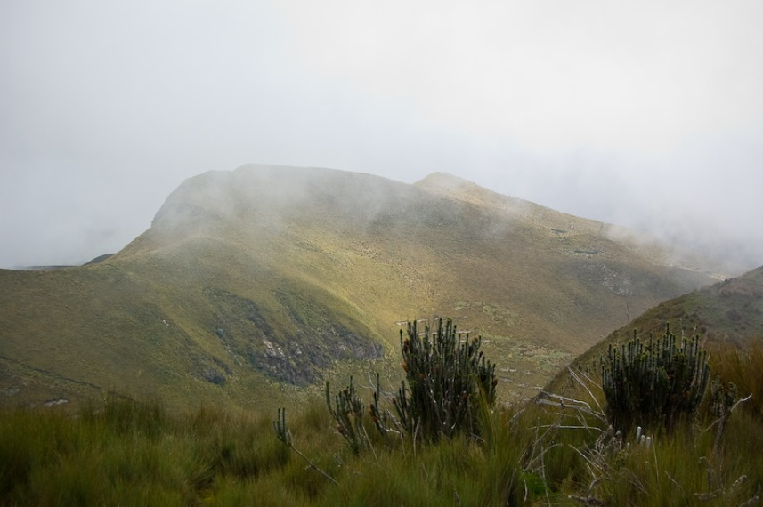Rucu Pichincha - © Flickr User - M+M Photographers...