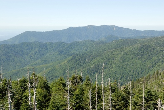 Mount Le Conte from Clingmans Dome - © Flickr ??? Nicholas Turland