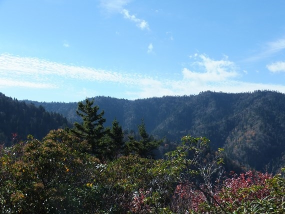View from Gracie???s Pulpit on Mt. Le Conte - © Flickr user - Vibes