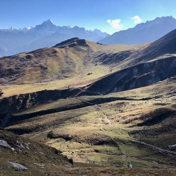 Garwhal, Kumaon Himalaya : High ground near Kuari pass - © Lucy Clive