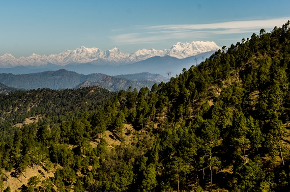 India NW: Uttarakhand, Garwhal, Kumaon Himalaya , Zero Point in Binsar, Walkopedia