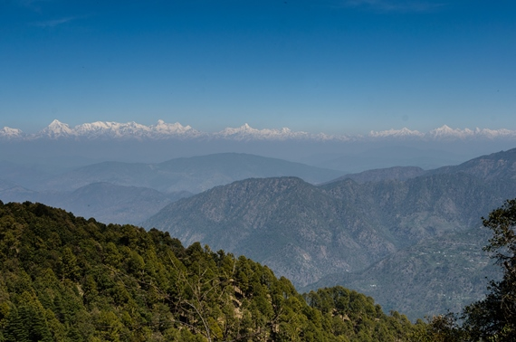 The view from Binsar of the Greatest Himalayan Range - © flickr user gkrishna63