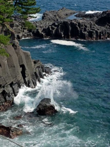 Izu Peninsula: Izu Jogasaki - © Walk Japan