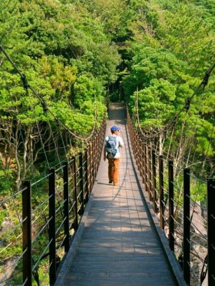 Izu Peninsula: Izu Jogasaki Bridge - © Walk Japan