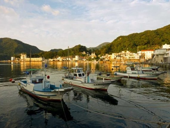 Izu Peninsula: Izu Fishing boats - © Walk Japan