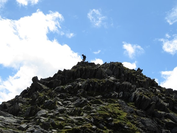 On Striding Edge - © William Mackesy