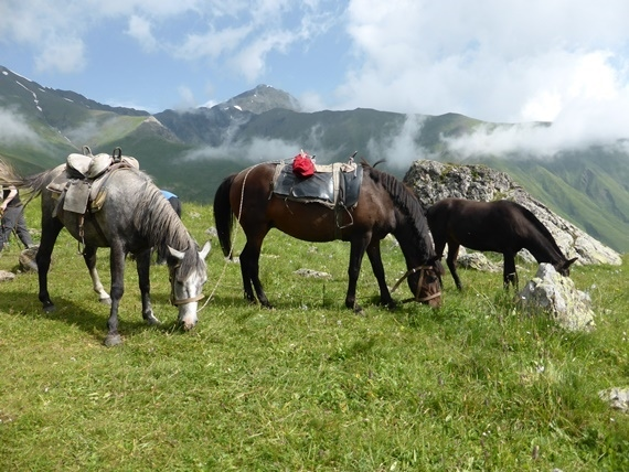 Greater Caucasus Mountains: © Nick Ince