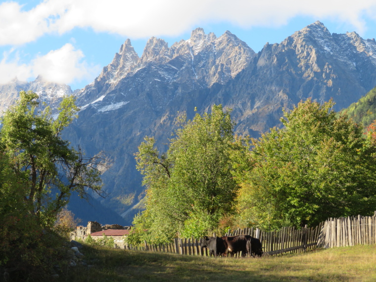 Greater Caucasus Mountains: Spires at head of Mestia valley