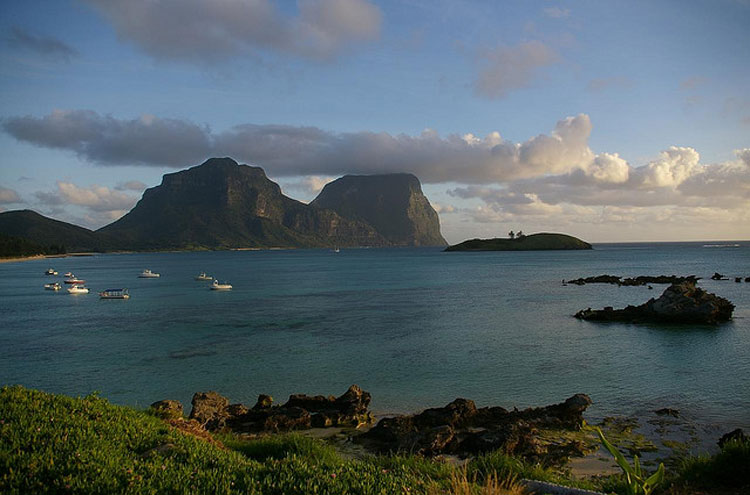 Lord Howe Island: Lord Howe Island - Percita