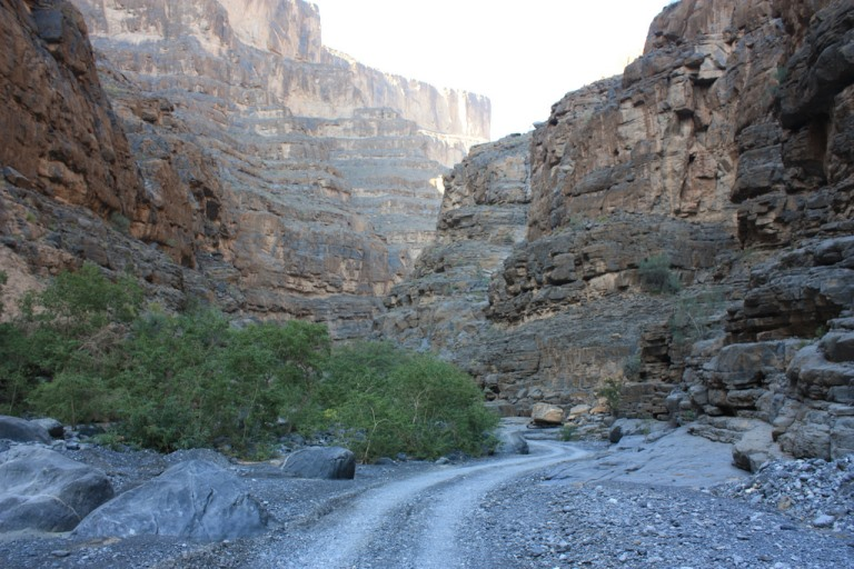 Inside Wadi An Nakhur - © flickr user - Arian Zwrs