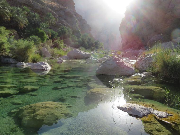 Across the Selma Pateau (E35): Bathing pool, Wadi Tiwi - © William Mackesy