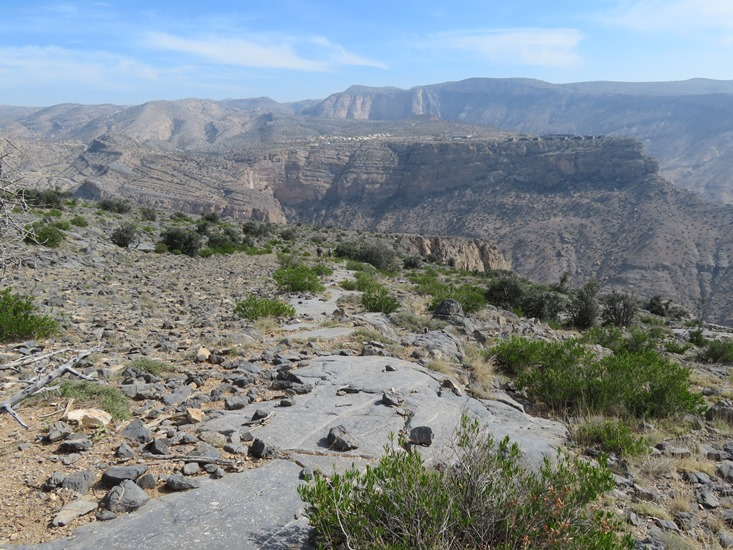Oman Western Hajar Mts: Jebel Akhdar, Qiyut to Ar Roos Traverse , Limestone pavement with millions of fossils, Walkopedia