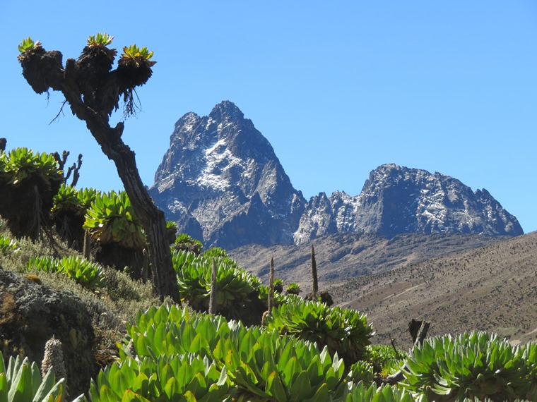 Mount Kenya