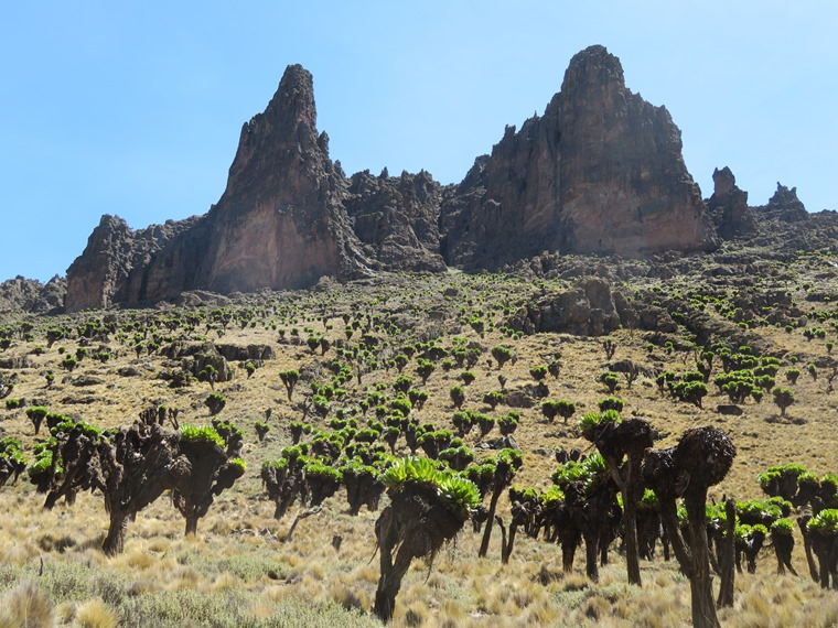 Mount Kenya: Mackinder valley flank - © William Mackesy