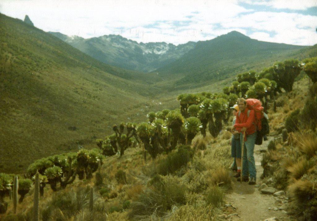 Mount Kenya: Teleki Valley Mt Kenya - © Dick Everard