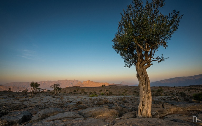 Jebel Shams - © flickr user Peter Rivera