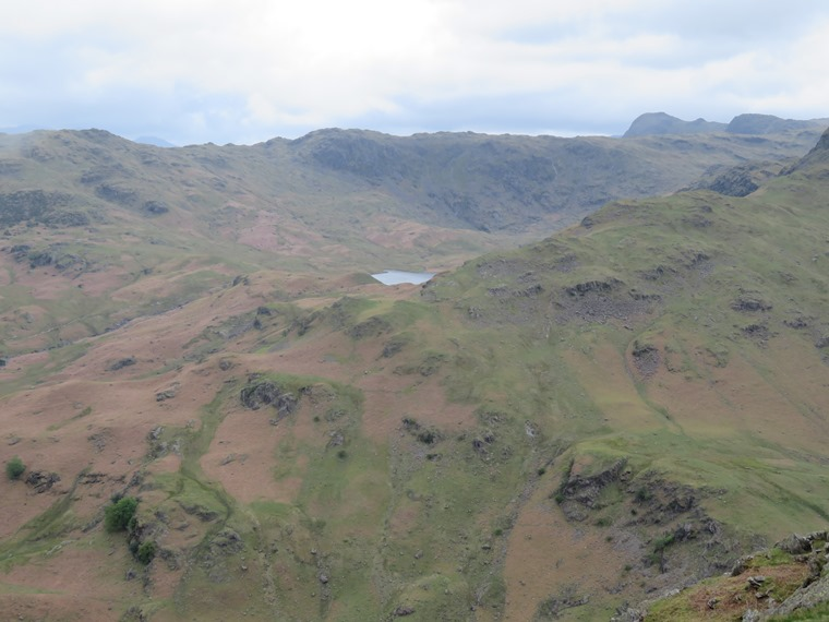 Easedale tarn, Langdales behind - © William Mackesy...